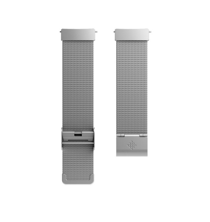 Fitbit Versa Stainless Steel Mesh Band